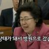 '국감장 웃음' 이은재