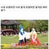 한국인들이 국내여행 꺼리는 이유.jpg