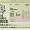 이집트 여권 레전드.jpg