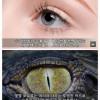 인류의 몸에 남은 10가지 진화의 흔적들