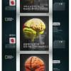 뇌는 이렇게활성화할수있지만 우리는....글쎄