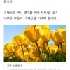 구혜선 안재현 올해 사주.jpg