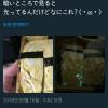일본의 빛나는 계란말이초밥